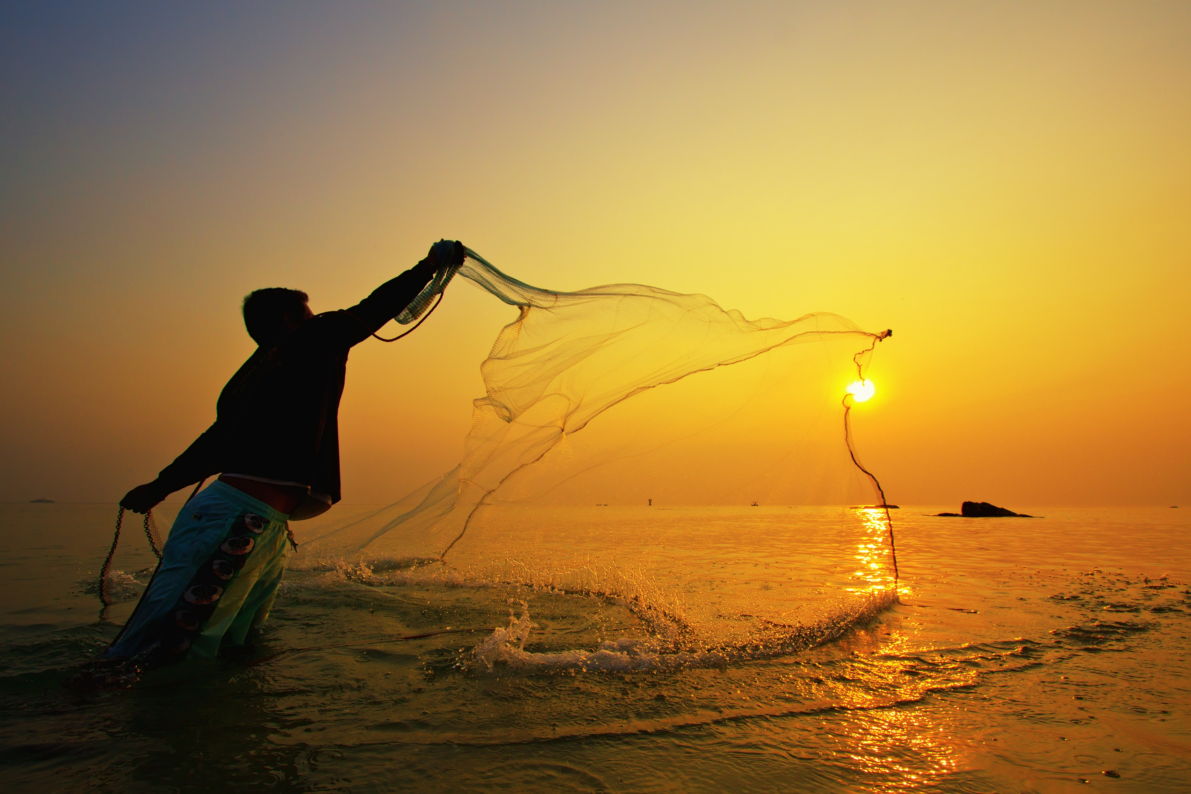 Regálale un pez a un hombre y comerá un día. Enséñale a pescar y comerá toda la vida…